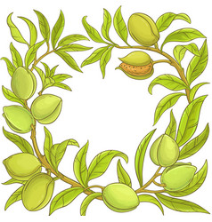 almond frame vector image