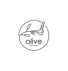 elegant olive logo design templateorganic olive vector image