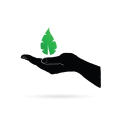 leaf green in black hand vector image