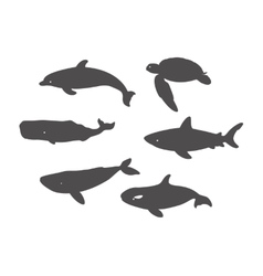 Shark Sea Turtle Dolphin and Whales vector