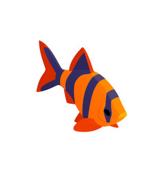 Striped aquarium fish composition vector