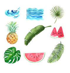 Tropical plant watercolor creative element on vector