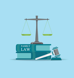 family law books with a judges gavel in flat style vector image vector image