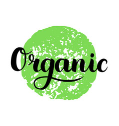 organic brush lettering hand drawn word organic vector image