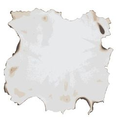 burnt paper vector image vector image