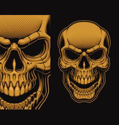 a a skull vector image