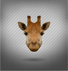 abstract triangle polygonal giraffe vector image vector image