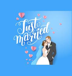 blue backdrop bride and groom vector image