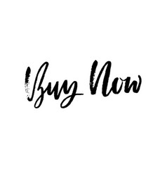 Buy now modern dry brush lettering handwritten vector