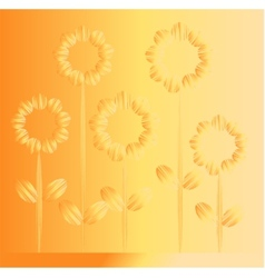 Five orange flowers vector image
