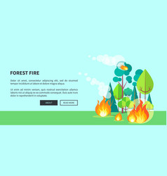 forest fire web poster with inscription vector image