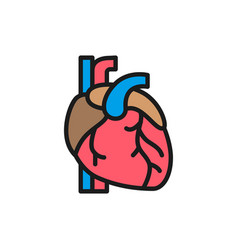 heart artery vein human organ flat color line vector image