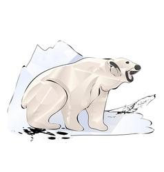 polar bear and ice vector image
