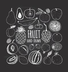 set fruit in doodle style on chalkboard vector image