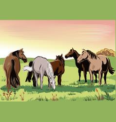 Wild horses vector