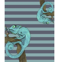 Chameleon card vector image vector image