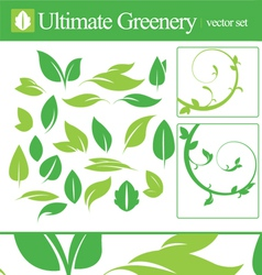 Ultimate greenery set vector image