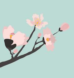 blooming cherry tree vector image