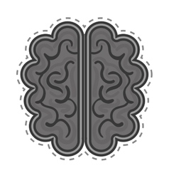 Brain organ human isolated icon vector