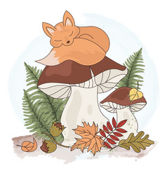 Dreaming fox cartoon forest animal vector