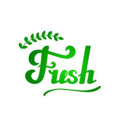 fresh hand written lettering vector image