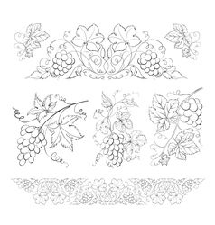 Hand drawn of pencil grapes set vector image