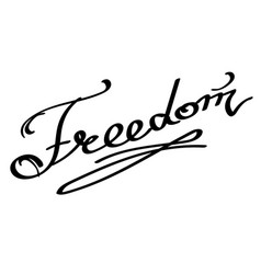 lettering freedom text hand sketched typography vector image