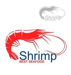 Marine red shrimp badge for fish market design vector image