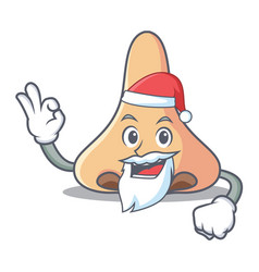 Santa nose mascot cartoon style vector