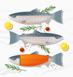 Set fresh raw salmon fish and spices vector