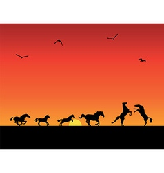 silhouettes of horses sunset vector image