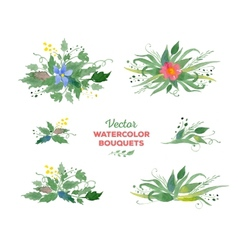 Watercolor floral bouquets vector