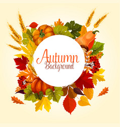 autumn poster of leaf fall and harvest vector image vector image