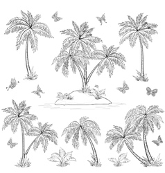 Tropical island palms and butterflies outline vector image