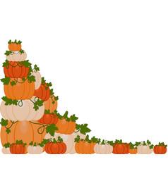 a pile of pumpkins vector image