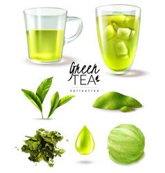 green tea iced set vector image