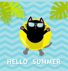 Hello summer black cat floating on yellow air vector