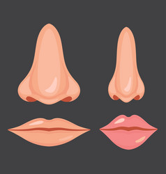 Human nose and mouth vector