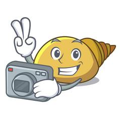 Photographer mollusk shell mascot cartoon vector