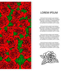 red roses and leaves banner design vector image