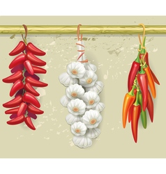 Strings of garlic and red peppers vector image vector image