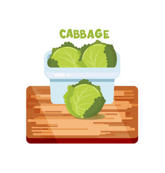 cabbage flat design vector image