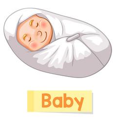 Educational english word card baby vector
