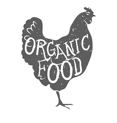 Hand Drawn Farm Animal Chicken Organioc Food vector image
