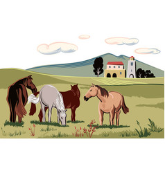Horses peacefully grazing in a meadow vector