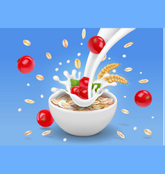 oatmeal flakes with milk and red currant vector image