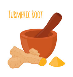 Turmeric root pestle mortar flat style vector