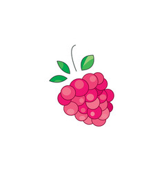 color raspberries icon vector image