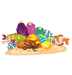 Coral reef fish vector