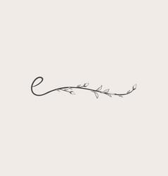 Hand drawn floral e monogram and logo vector